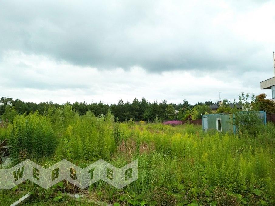 Поселок Никольская слобода – фото 1