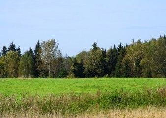 Поселок Павлово-2