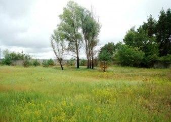 Поселок Малое Сареево