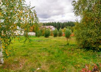 Поселок ДСК Лес (Шульгино)